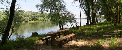 Piknik na obali rijeke Drave